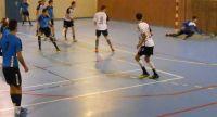 Lire la suite: Un Pays des Nestes Handball emballant